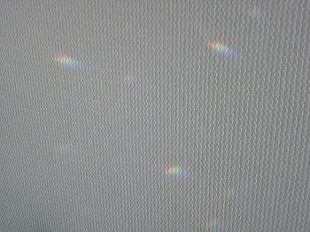 SN3D1448.jpg